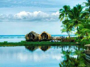 The Kerala Adarak Blend